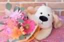 フレンドリー犬のココとプチブーケ