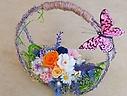 ○●東花園●○桃色の蝶 と 秘密の花園