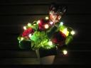 ロマンチックな赤バラのフラワーイルミネーション