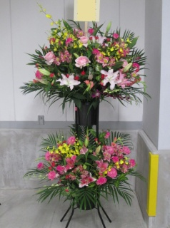【スタンダード2段スタンド】ピンクレッド&イエロー