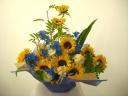 《元気フラワーの向日葵がいっぱい!》