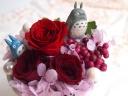 真っ赤なバラに寄り添うトトロ♪