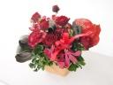 赤い花たちを集めて… 《紅いろの花贈り》
