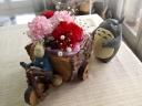トトロ、森の三輪車でお届け♪ 母の日の花贈り
