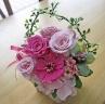 ピンク系のバラと鮮やかピンクのジニア♪