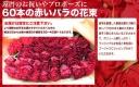 イーフローラ 60本の赤いバラの花束