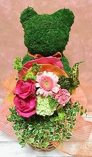 プミラとミニ花束☆アニマルモスのくまさん
