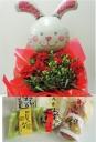 バルーン・ウサギ(赤)&和菓子セット