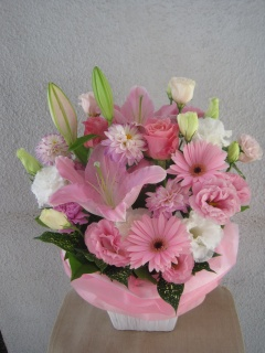 Lilly~pink