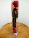 赤バラのプリザーブドフラワー