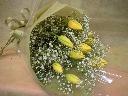 チューリップとカスミソウのお花束