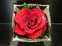 【ビクトリアン★ローズ】1輪の薔薇に想いを込めて