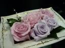 ★Deeply Grateful★ 薔薇の癒し