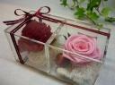 Twin Flowers♪「赤い宝石箱・・★」