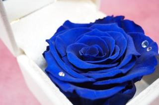 【3月誕生石&薔薇】ジュエリーBOX