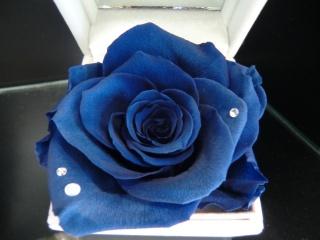 6月誕生石&薔薇?ジュエリーBOX