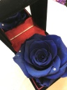9月誕生石&薔薇のジュエリーBOX