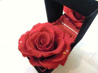 11月誕生石&薔薇?ジュエリーBOX