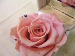 12月誕生石&ピンク薔薇?ジュエリーBOX