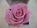 5月誕生石&薔薇のジュエリーBOX