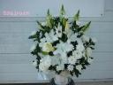 白いお花で。。。