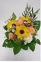 pretty arrangement y・o系