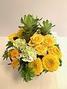 Yellow&Green arrangement