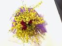 オンシジューム Bouquet