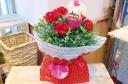 ★母の日 ThankYouわんちゃん★赤カーネ花鉢