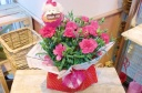 ★母の日ThankYouわんちゃん★ピンクカーネ鉢