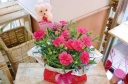 ★母の日 ピンクカーネ花鉢★わんちゃんピック付き