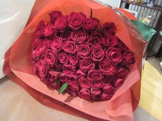赤バラのゴージャス花束