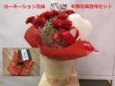 カーネーション花鉢と有馬松茸昆布セット
