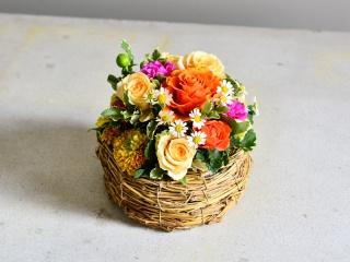 鳥のすからオレンジのお花たち