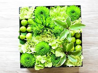 BOXアレンジ(グリーン)
