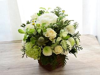 おしゃべりな白い花たち