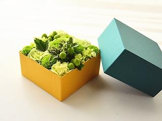 みどり色BOXアレンジメント【グリーン】
