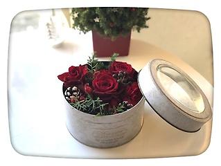 Rose's Box