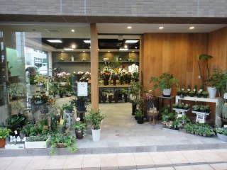 "FLORIST HANA奈良県生駒市元町のC6747C1F<a href=""http://www.eflora.co.jp/shop/f-hana/access/"" target=""_to80>地図</a>