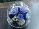 母の日☆ガラスドーム・プリザ 【ブルー】