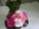 Moss Bear Pink