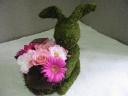 Moss Rabbit Pink
