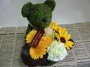 Moss Bear Yellow