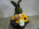 Moss Rabbit Yellow