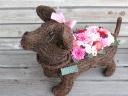 【プリザ】花いっぱいダックスⅡ L R ピンク