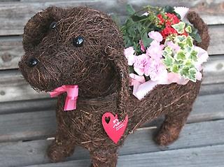 Dog Lサイズ  Pink
