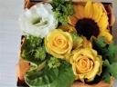 黄色のお花箱