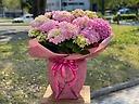 ジャンボ!紫陽花鉢