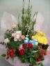花さらり 季節の花鉢おまかせセット♪