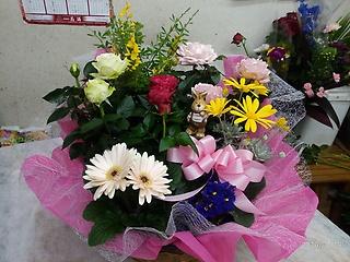◆季節の花材を使った お任せ花鉢です ◆